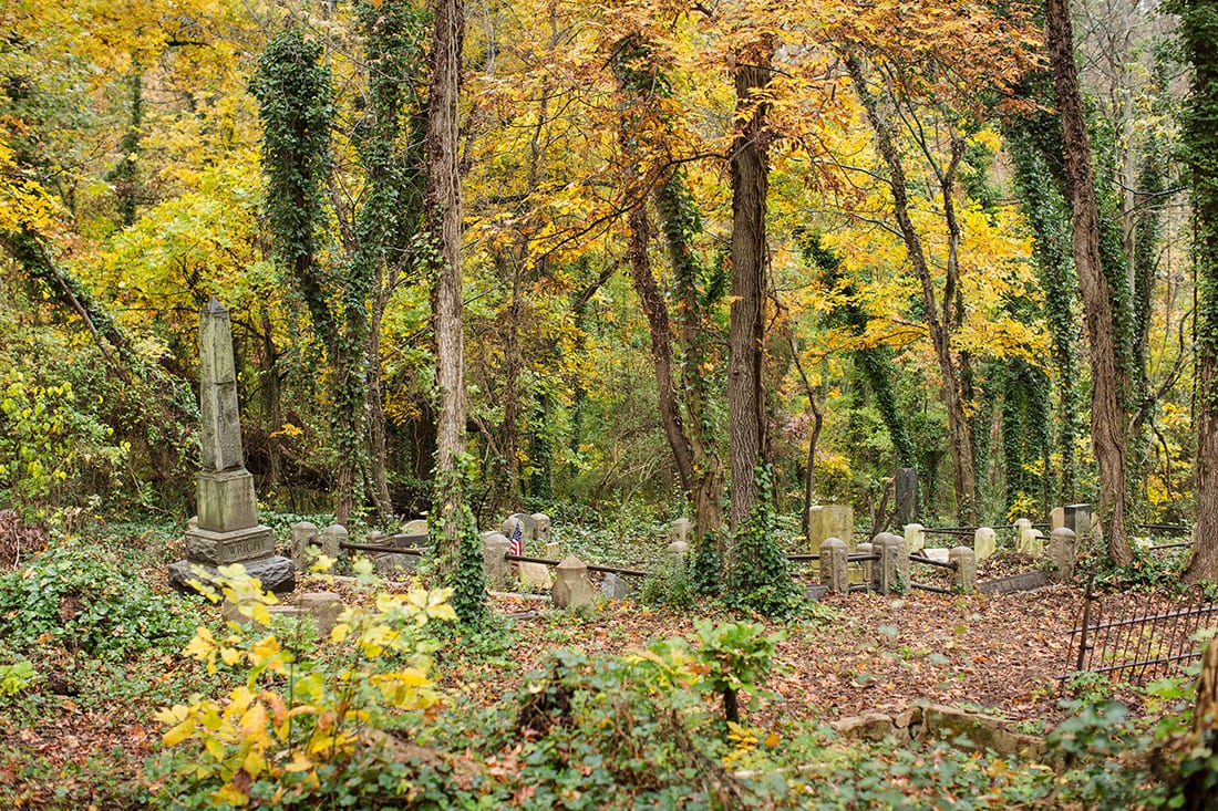 Orange and gold foliage in the cemtery.